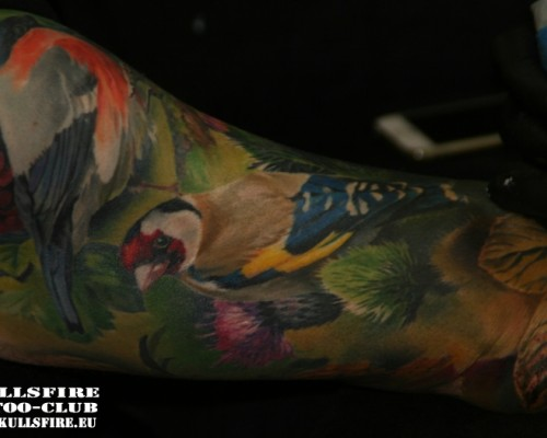 Best Tattoos   Color  277