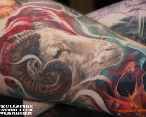 Best Tattoos   Color  282