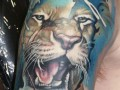 Best Tattoos   Color  329